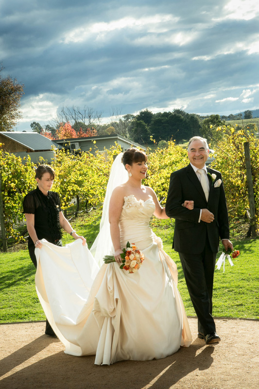 The bride and her father are walking in front of the grape vines at Immerse winery.