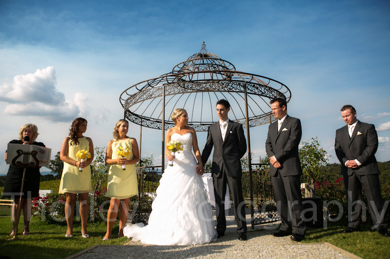 The bridal party outdoors in front of the iron gazebo.
