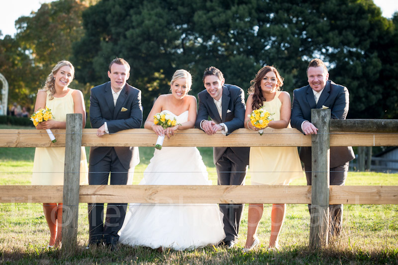 Bridal party leaning on cattle fence at Yarra Ranges winery.