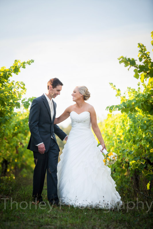 Bride and groom in amongst the grape vines.