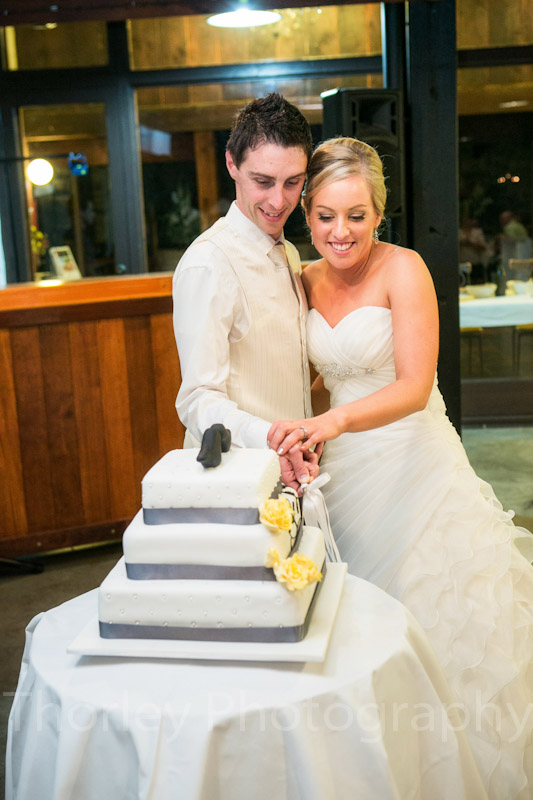 Photo of the bride and groom cutting the cake.