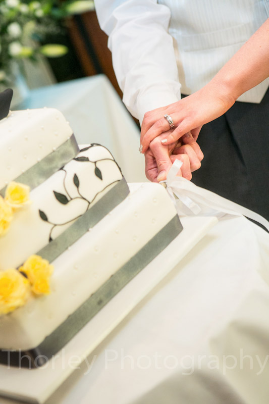 Close up of the hands cutting the cake.
